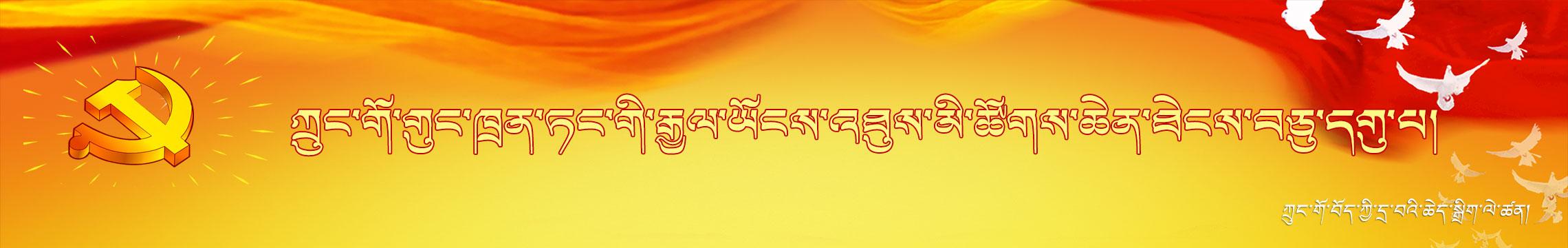 将改革进行到底-中国藏族网通藏文专题