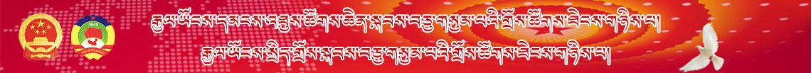 我和我的祖国——和谐藏区行