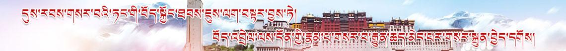践行新时代党的治藏方略 不断开创涉藏工作新局面